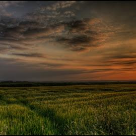 Intruder or Refugee ? by Klaus Müller - Landscapes Sunsets & Sunrises ( clouds, sky, nature, hdr, sunset, czech republic, landscape, evening,  )