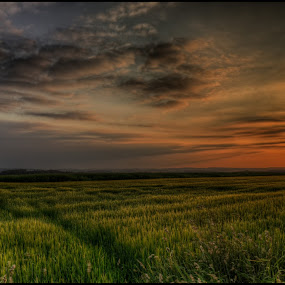 Intruder or Refugee ? by Klaus Müller - Landscapes Sunsets & Sunrises ( clouds, sky, hdr, nature, sunset, czech republic, landscape, evening,  )