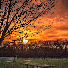 Sunset Out Back by Pat Lasley - Landscapes Sunsets & Sunrises ( clouds, sky, sunset, drama, golden hour )