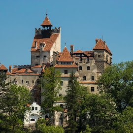 Bran castle in Romania by Lucian Pirvu - Buildings & Architecture Public & Historical ( green, nono pirvu, summer, castle, medieval, photography, bran )