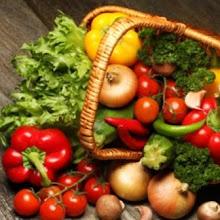 Vegan Cookery