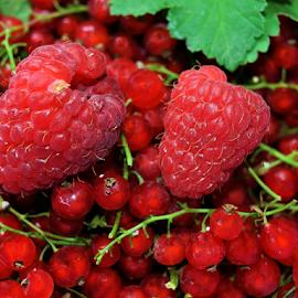 red,red,red.... by LADOCKi Elvira - Food & Drink Fruits & Vegetables ( fruits,  )