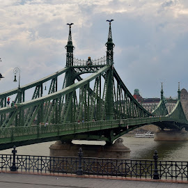 Budapest by Lynnie Keathley - Buildings & Architecture Bridges & Suspended Structures
