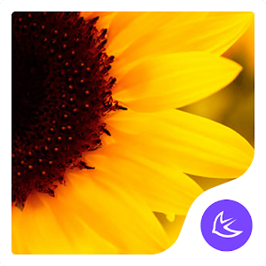 Sunflower APUS launcher theme for PC-Windows 7,8,10 and Mac