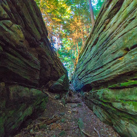 Virginia Kendall Ledges by Brendan Simpson - Landscapes Caves & Formations ( canon, seasonal, bright, colorful, green, vivid, scenic, canon photographer, sun, adventure, overlook, nature, ohio, scenic overlook, outdoors, summer, summertime, natural, ledges )