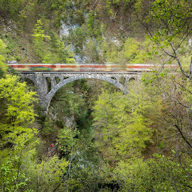 Fast train over Vintgar gorge by Bor Rojnik - Landscapes Travel ( water, gorenjska, cascade, triglav national park, vintgar, landscape, river )