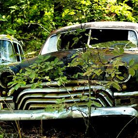 by Joel Mcafee - Transportation Automobiles