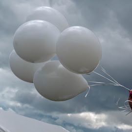 Wedding Balloons by Adele Price - Wedding Details ( white, balloons, wedding,  )