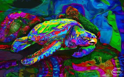 Por siglos he viajado por un mar de luces, sin un rumbo fijo me guía la corriente de mis propios sentimientos encontrados, islas submarinas son mi refugio, cuando tormentas de colores azotan mi calma.