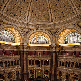Grand Reading Room by Craig Pifer - Buildings & Architecture Public & Historical ( dc, washington d.c., books, detail, vertorama, reading, congress, inside, library, washington dc, library of congress )