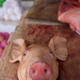 This Little Piggy Went To Market by Brent Hendricks - Food & Drink Meats & Cheeses ( pig butcher, cambodia )