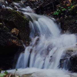 by Драган Рачићевић - Nature Up Close Water