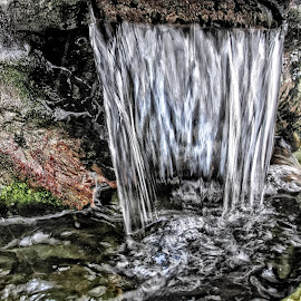 DNI wf 04 by Michael Moore - Nature Up Close Water