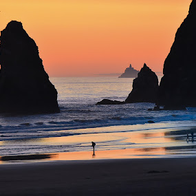 Juxtaposition by Clement Stevens - Landscapes Travel ( waves, sunset, lighthouse, ocean, beach, rocks,  )