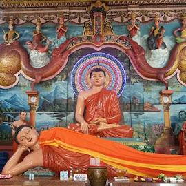 Meditation & Sleeping Buddha by Lum Nichloas - People Maternity