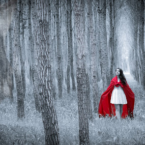 Little Red Riding Hood by Robbie Caccaviello - People Fine Art