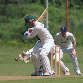 by John Davies - Sports & Fitness Cricket ( cricket, swansea university, university cricket )