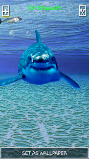 Angry Shark Pet Cracks Screen APK for Bluestacks