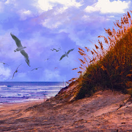 Gull Beach by Eugene Linzy - Landscapes Beaches ( water, sand dune, waves, ocean, beach, birds, gulls )