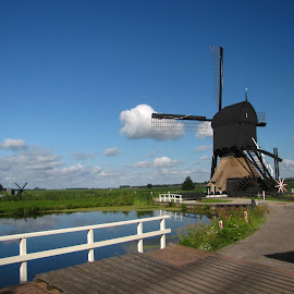 Dutch Mill by Nico Kranenburg - Landscapes Travel ( mill, white fence, meadows, landscape )