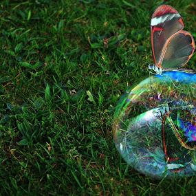 Lighter than air by Natalie Houlding - Digital Art Things
