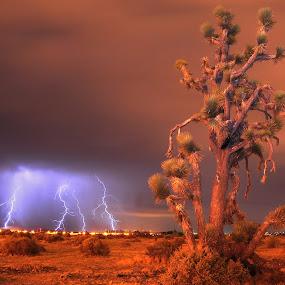 by William Lofgren - Landscapes Weather