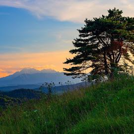 Belianske Tatry, Slovakia by Stanislav Pokorny-Fotograf - Landscapes Mountains & Hills