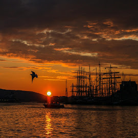 Sunset at the Tall Ships Races   by Espen Rune Grimseid - Landscapes Sunsets & Sunrises ( water, canon, bergen, sunset, dark, tall_ships, reflections, golden, norway )