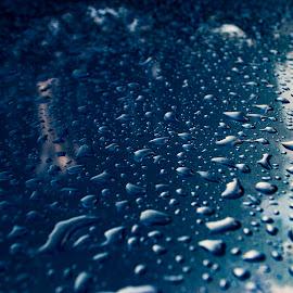 waterdrops in perriwinkle by Tim Hauser - Abstract Water Drops & Splashes ( abstract, tim hauser photography, fine art photography, abstract photography, waterdrops )