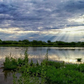 Good Morning Sunshine!  by Deb Bulger - Instagram & Mobile Android ( clouds, nature, waterscape, sunrays, wildlife, weather, landscape, morning, preserve,  )