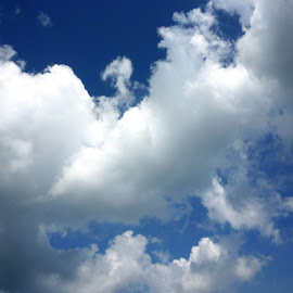 Blue sky with clouds, may be used as background by Rahmat Nugroho - Landscapes Cloud Formations ( haze, copy space, copyspace, moisture, beauty, space, panorama, open, sky, blue sky, nature, fleecy, cloudy, meteorology, deep, light, climate, gloaming, lots, heaven, beautiful, cloudscape, atmosphere, overcast, many, environment, fluffy, blue, horizontal, puffy, peace, outdoors, background, cloud, air, day, small, panoramic, daylight )