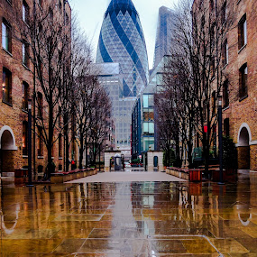 london egg by Balan Gratian - Buildings & Architecture Office Buildings & Hotels ( london egg, reflection egg, miror egg, egg in rain, london in rain )