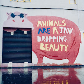 street art by Mary Yeo - Typography Captioned Photos