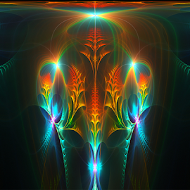 Floral by Cassy 67 - Illustration Abstract & Patterns ( digital art, fractal, digital, fractals, flower )