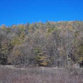 Есен by Georgi Kolev - Novices Only Landscapes ( небе., гора., есен., треви., време. )