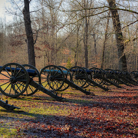 Shiloh by Kevin Esterline - City,  Street & Park  Historic Districts ( canon, park, shiloh, war, military, artillery )
