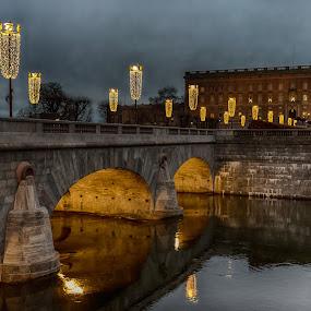 Castle in Stockholm/Sweden by Dan Westtorp - Buildings & Architecture Public & Historical