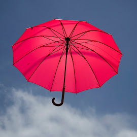 Gamcheon Red Umbrella by Doug Craig - Artistic Objects Other Objects ( red, umbrella, busan, gamcheon, korea, dougcraigphotography )