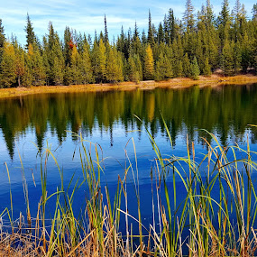 Mountain pond in fall by D.j. Nichols - Instagram & Mobile Android ( fall, pond mountain )