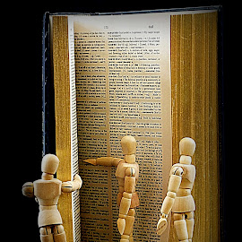 Woody Men Reading by Ann Seedhouse - Artistic Objects Still Life ( reading, wooden men, still life, book, objects )