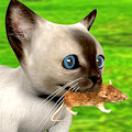 Hungry Cat vs Mouse Chase APK for Bluestacks