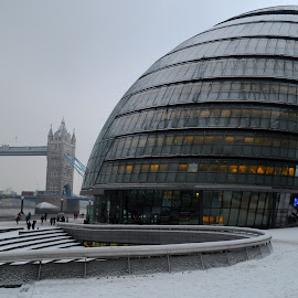 Government by Winter by DJ Cockburn - Buildings & Architecture Office Buildings & Hotels ( city hall, building, uk, southwark, street scene, architecture, cityscape, city, urban, england, winter, london, norman foster, snow, tower bridge, glass, the scoop at more london, bascule, river thames, greater london authority )