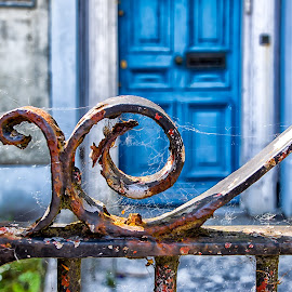 An old, rusty, cobweb ridden gate.  by Carol Ward - City,  Street & Park  Street Scenes ( ennis ireland, street, neighborhood, door, rusty gate, city, gate )