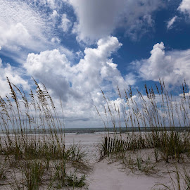 Santa Rosa by Jim Hamel - Landscapes Beaches ( water, sky, santa rosa, florida, sea, beach )