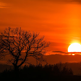 Sun by DC Photos - Novices Only Landscapes ( mountains, nature, tree, sunset, skyporn, sun, bulgaria )