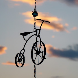 Ride into Sunset by Laurie DeMent - Artistic Objects Other Objects