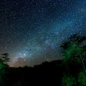 milky way at Borneo, Sabah, Malaysia by Macbrian Mun - Landscapes Starscapes ( constellation, galaxies, glow, long, twinkle, sabah, borneo, science, milky way, planet, sky, tree, nature, astrophotograph, dark, astrology, glittering, night sky, darkness, light, glitter, black, shiny, hill, wallpaper, atmosphere, malaysia, wide, universe, astronomy, orbit, stars, trees, natural, galaxy, starry, exposure, starlight, celestial, distant, way, sparkle, space, landscape, asia, planetarium, cosmos, long exposure, astrophotography, abstract, nebula, starry sky, at night, backgrounds, star, cosmic, solar, color, blue, background, night, cosmology, glowing, milky )