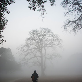 Mirror-of-nature  by Vishal  Singh - People Street & Candids ( framing., tree, travel, people, foggy weather, mistry )