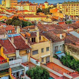 Rooftops in Spain by Rick Pelletier - Novices Only Objects & Still Life