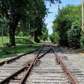 Train Tracks by Lori Bourscheid - Transportation Railway Tracks ( railroad tracks, great smoky mountain railroad, train, north carolina )